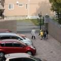 無断駐車の対策に必須のグッズや張り紙テンプレートの紹介